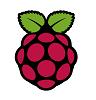 Raspberry Pi embedded